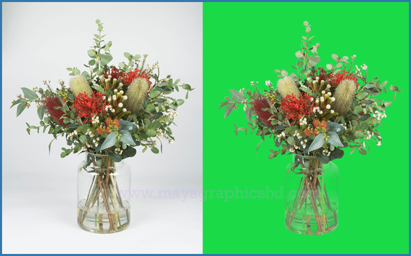 Clipping Path Service- MG